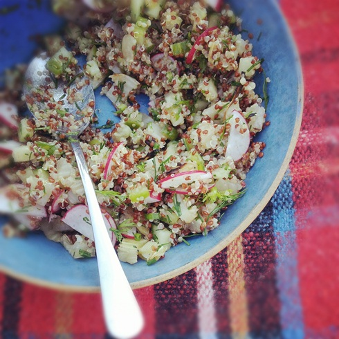 Quinoa, cucumber, radish and fennel salad