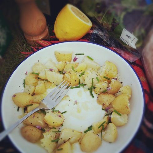 Allotment dinner of new potatoes