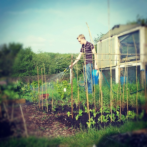 Watering the allotment