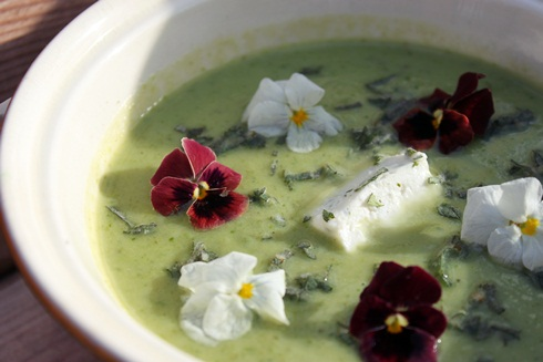 Green soup with edible flowers
