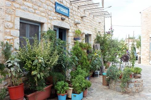 Street garden in Aeropoli